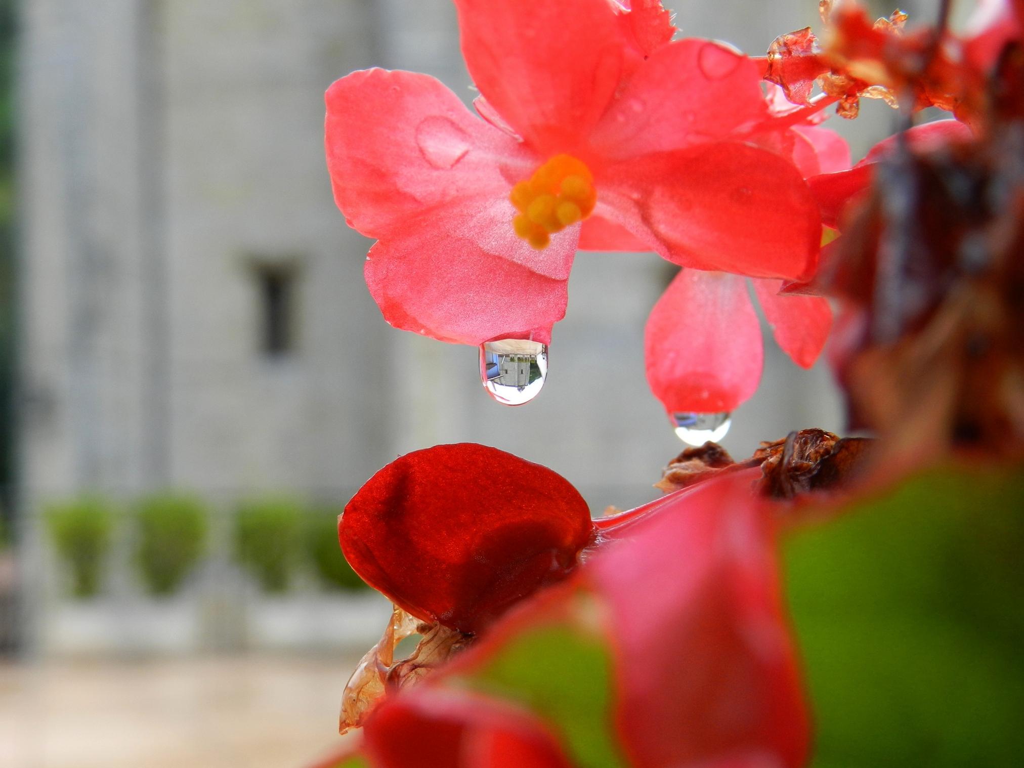 Capacidad de la gota de agua….Maider Zubeldia